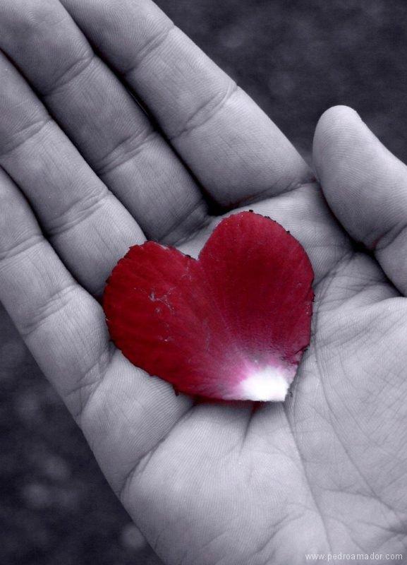 Una mano con un corazon
