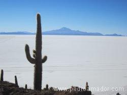 BOLIVIA Salar de Uyuni 3