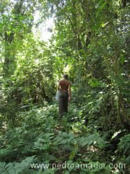 TANZANIA Arusha trekking KIli resize