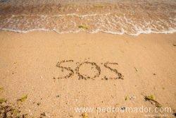 SOS 800