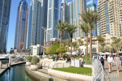 Dubai Marina 104