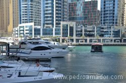 Dubai Marina 25 1