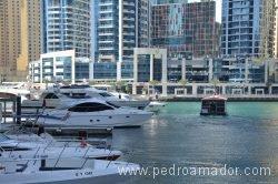 Dubai Marina 25