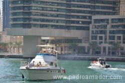 Dubai Marina 29
