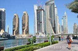 Dubai Marina 42