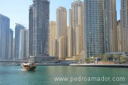 Dubai Marina 50 1