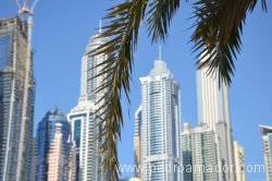 Dubai Marina 59